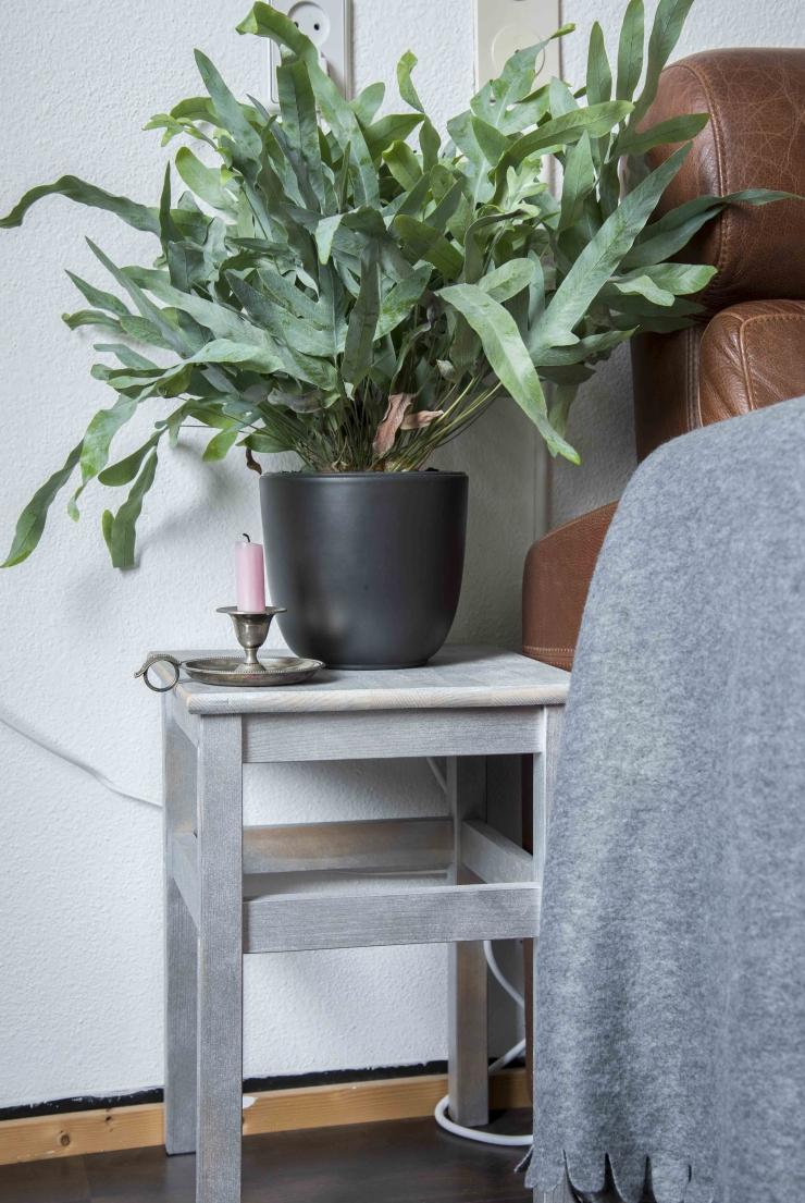 De plant naast de bank is van Intratuin. De kaarsenstandaard heb ik gekocht op een markt in Gouda en het grijze kleedje is van Xenos.