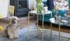 VIDEO HOMETOUR: luxe voor een prikkie