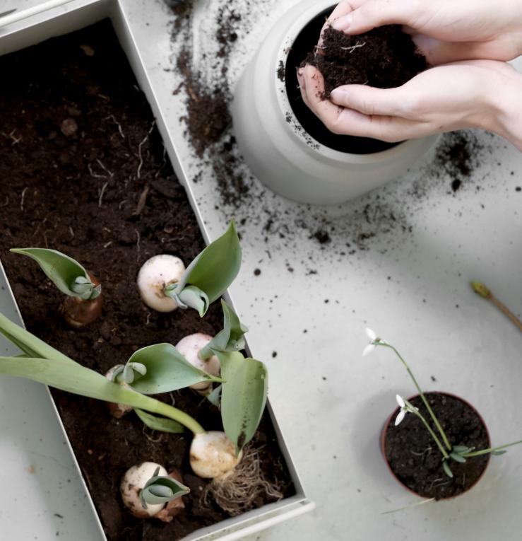 Ferm Living Plant Box Small Dark Grey