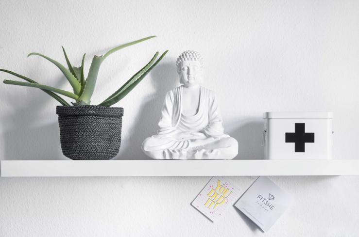 De buddha heb ik gekregen van mijn zus toen ik mijn rijbewijs behaalde. De kist is van Kwantum, de plant van Loods 5.