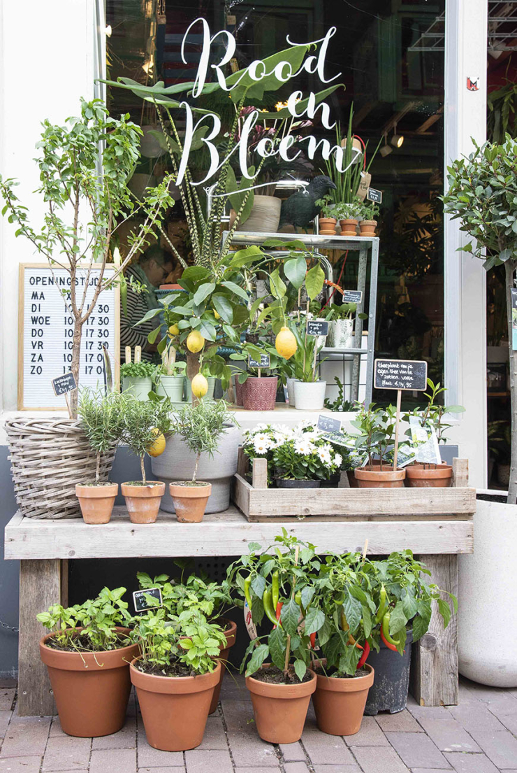 Winkelen in Utrecht @ Rood & Bloem
