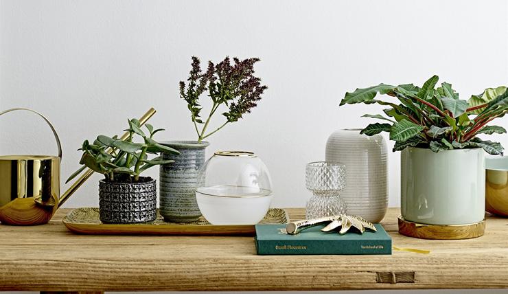 Houd bloemen in huis mooi met deze bijzondere trucs