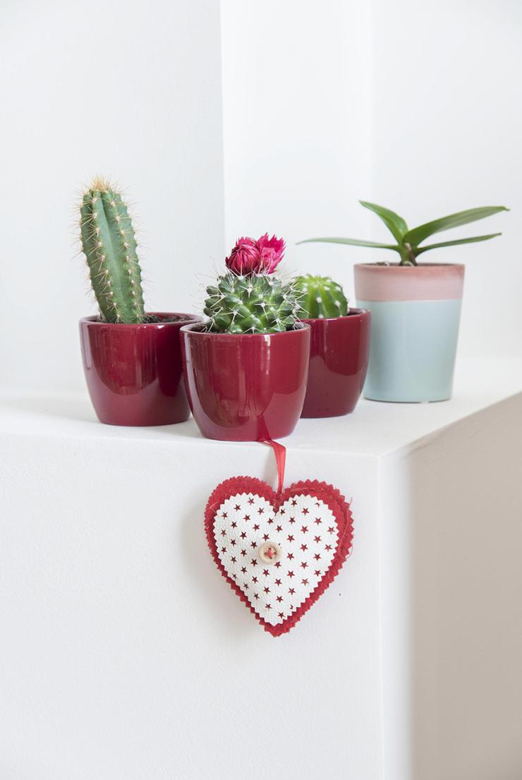 """""""De cactussen en de rode potjes kreeg ik van een vriendin uit Zwolle."""""""