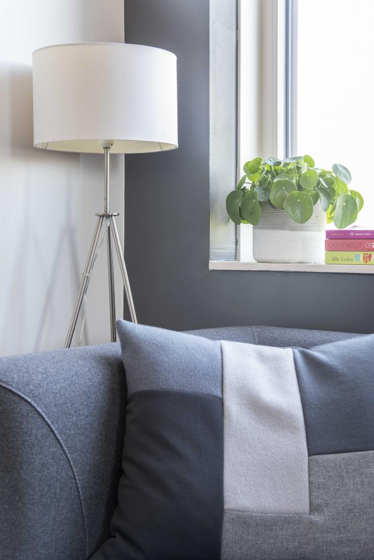 Modern en clean wonen - pannenkoekenplant