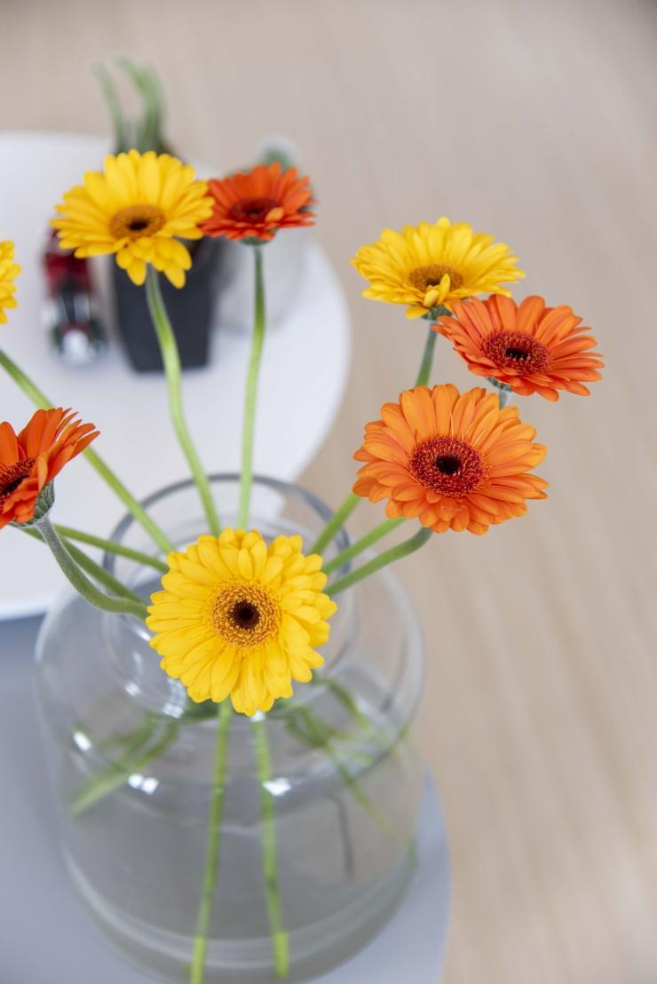 Modern en clean wonen - bloemen in vaas