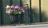 Bloempot op fiets