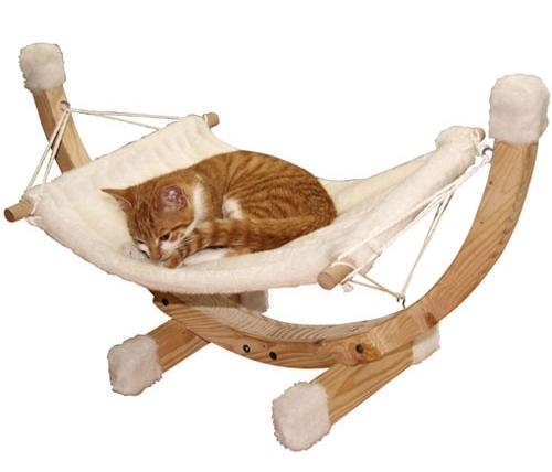 Kattenhangstoel