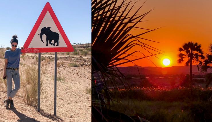 Oog in oog met een olifant   Namibie reisvlog #4