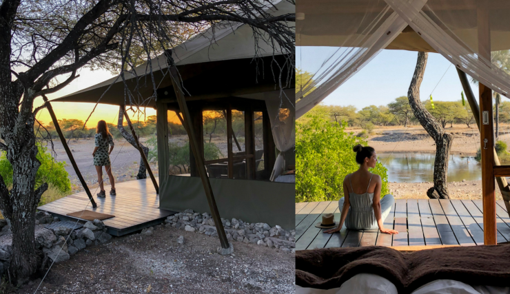 Glampen tussen de luipaarden   Namibie reisvlog #5