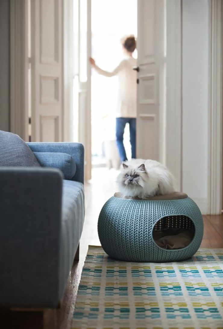 Curver kattenmand - kattendag