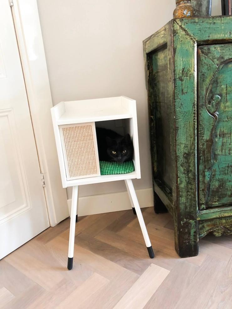Wereld kattendag: miauw voor een kittig interieur