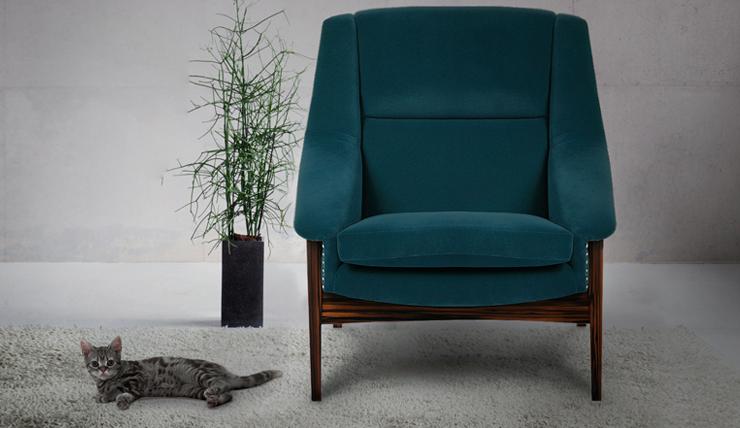 Wereld kattendag miauw voor een kittig interieur