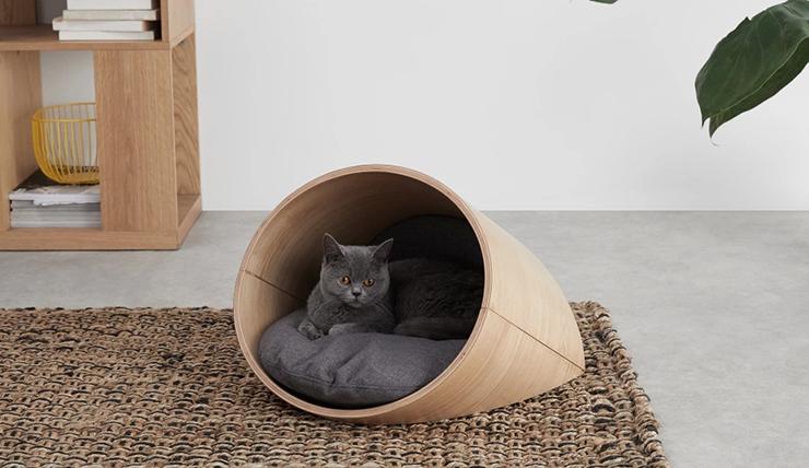 Een katten lounge: iets voor jouw diva?!
