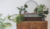 Licht je planten uit op een vintage dressoir