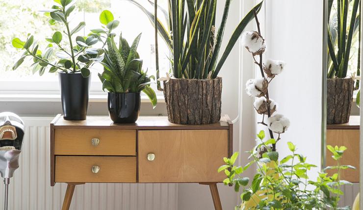 Tweedehands Meubels Amsterdam : Tips voor online kopen van tweedehands meubels en accessoires