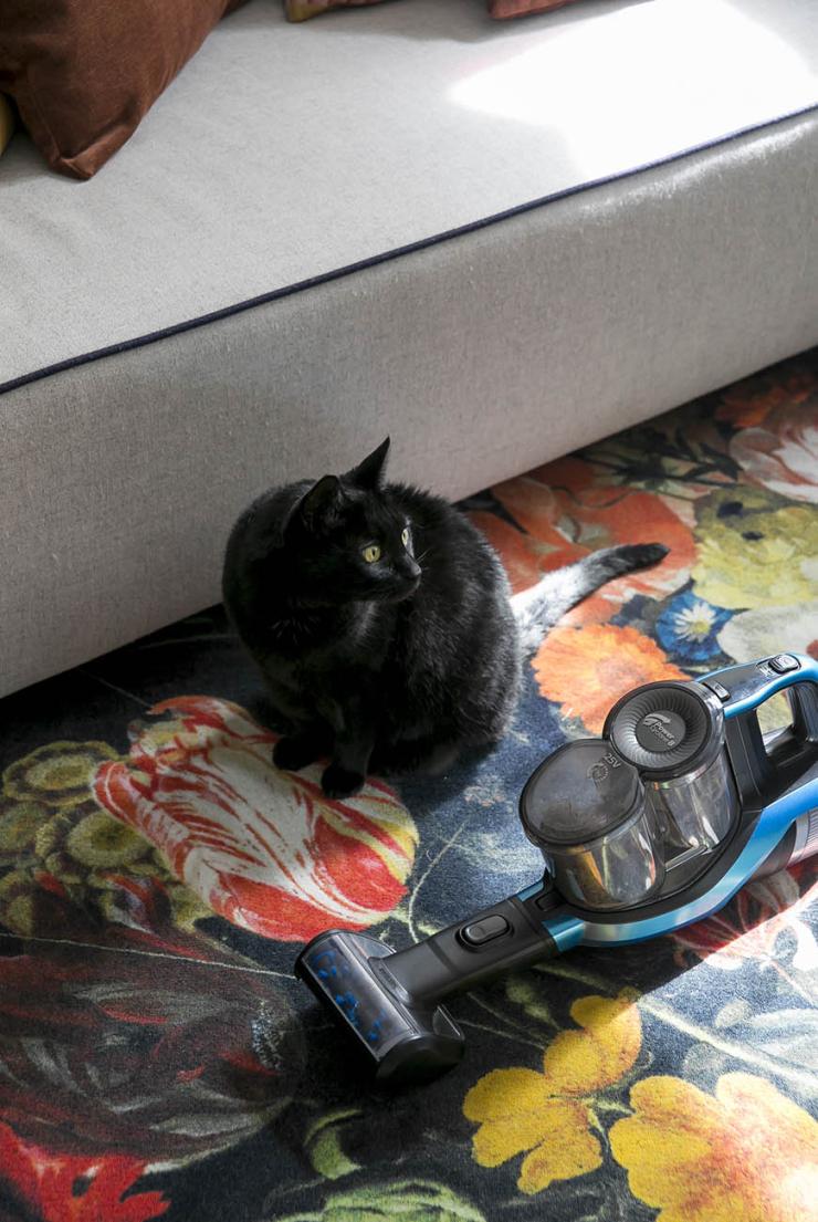 De Ultieme Schoonmaaktip Voor Thuis Met Een Kat Interior