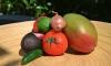 Exotische-salsa-AH-verspakket