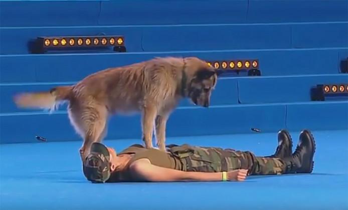 hond-reanimeert-mens