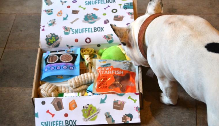 snuffelbox-4