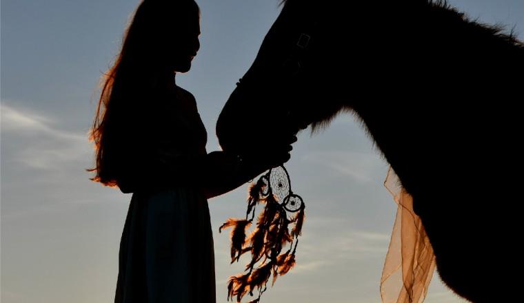 dromenvanger-paarden
