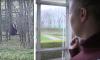 Gezin koopt 'droomhuis' dat blijkt uit te kijken op homo-ontmoetingsplaats
