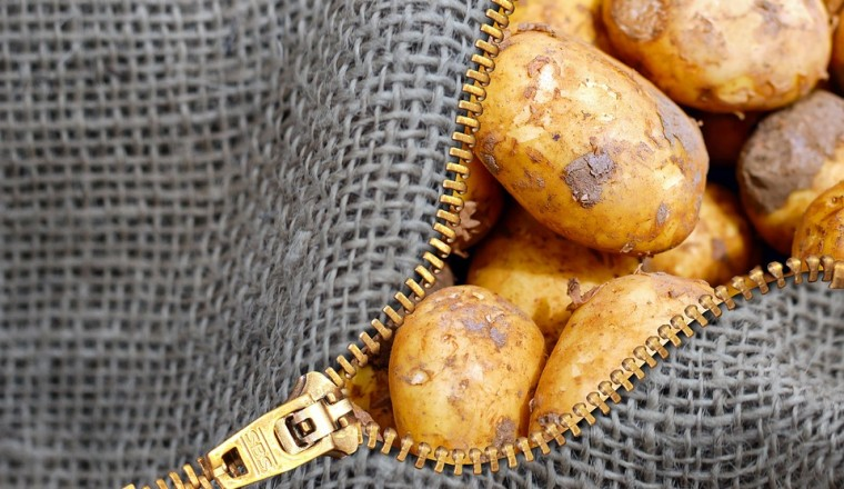 Kan je de uitlopers van een aardappel opeten?